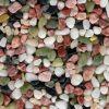 供应打磨抛光2-4cm鹅卵石 天然鹅卵石 彩色鹅卵石