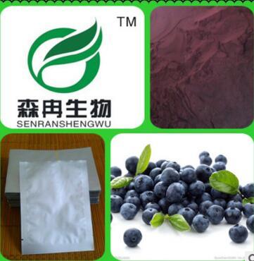 蓝莓提取物 越橘提取物10:1 蓝莓粉 品质保证厂家热销