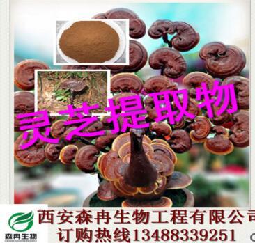 灵芝提取物/赤芝提取物/灵芝多糖30%50% 森冉生物厂家直销