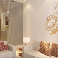 中国硅藻泥行业涂装效果研发院在白山市揭牌