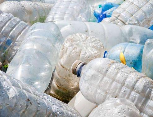 用虫子消灭塑料污染会带来生态上的灾难么?